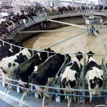 Filtros de aire para agricultura y ganaderia